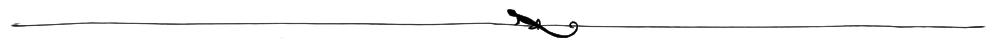 Gecko_divider_2